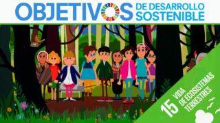 ODS 15 · Vida de ecosistemas terrestres · Objetivos de Desarrollo Sostenible