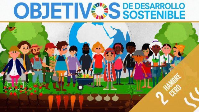 ODS 2 · Hambre cero · Objetivos de Desarrollo Sostenible